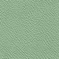 Porcelain Green Leather